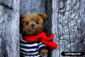 Teddy Bear Captions for Instagram