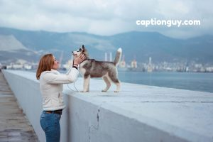 Captions for Pictures With Dogs