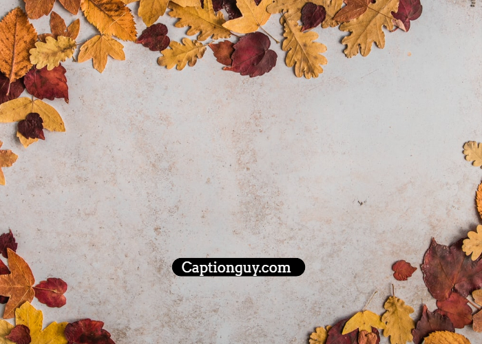 Simple Fall Captions